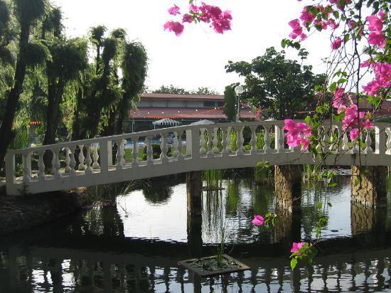 Montebello Villa Hotel : Montebello Gardens