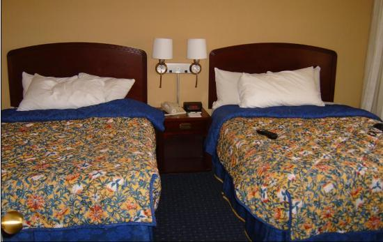 Courtyard Minneapolis-St. Paul Airport: Double bed suite