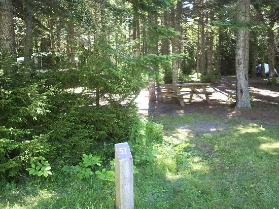 Bay Of Fundy Camping >> Site 57 At Pointe Wolfe Campground Picture Of Fundy National Park