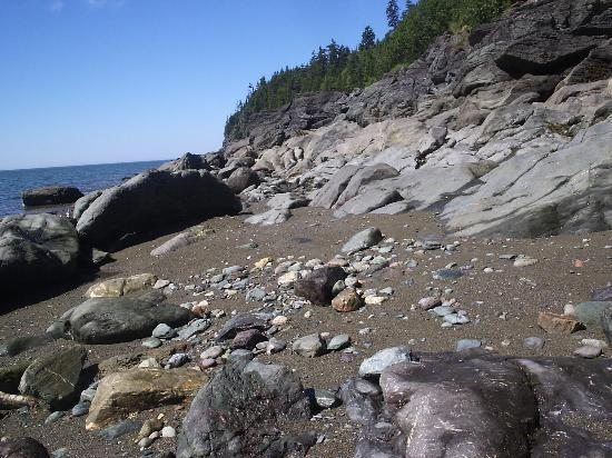 Fundy National Park: The Pointe Wolfe Beach at (nearly) low tide.