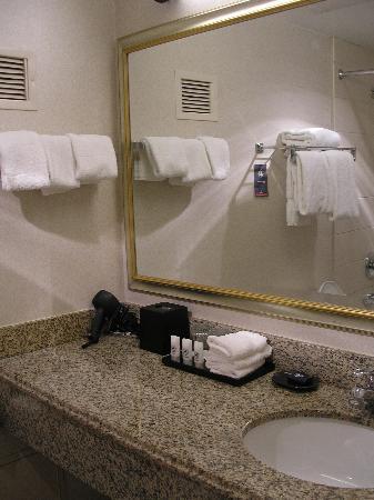 Courtyard by Marriott Alexandria Pentagon South: Bathroom Vanity