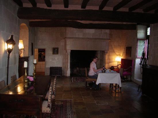 Chateau de Danzay Photo
