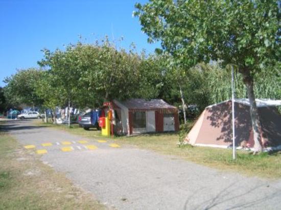Parque de Campismo da Costa Nova: Camping zone