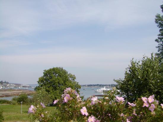 The Harbour Cottage Inn: Southwest Harbor