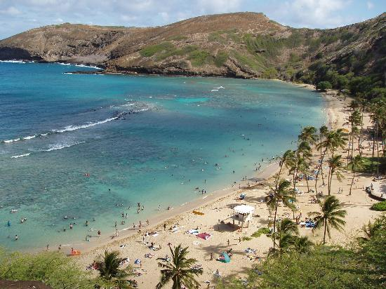 Honolulu, HI: Hanauma Bay from the parking lot waiting for our ride!