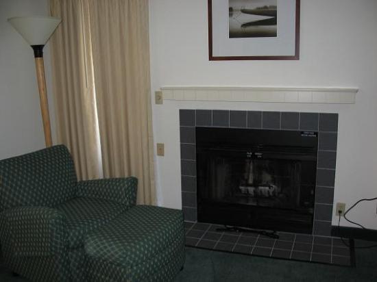 Residence Inn Boise Downtown: Fireplace