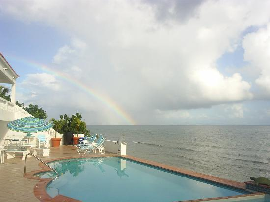 Isla de Vieques, Puerto Rico: The pool rainbow