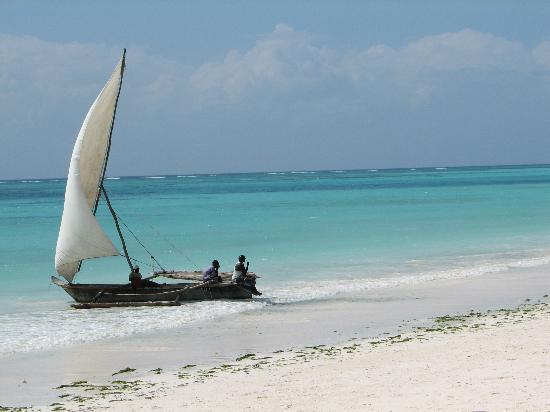 Kiwengwa, Tanzania: Local Life on the Beach