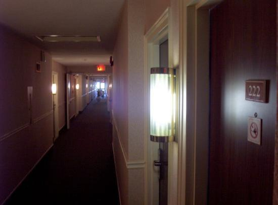 Comfort Inn Cambridge: the ultra clean hallway