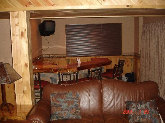 Wilderness Resort: lower level bar and sofa bed