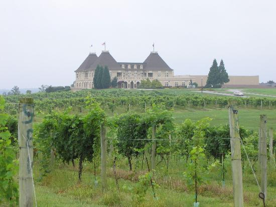 ‪‪Braselton‬, جورجيا: Chateau and Vineyard‬