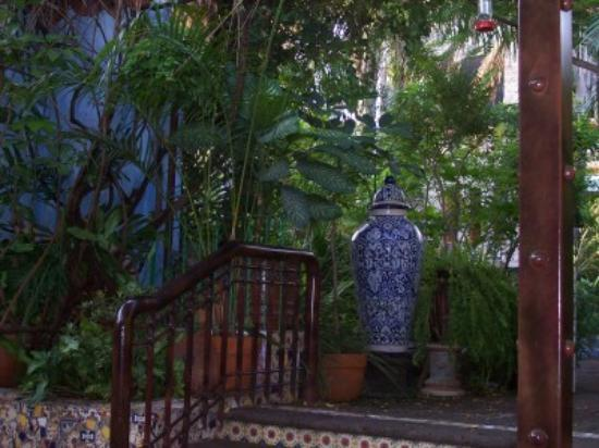 Casa de Las Flores: The view while having breakfast