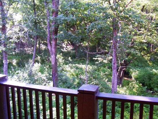 AmericInn Lodge & Suites Wisconsin Dells: View from balcony