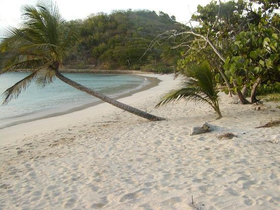 Mayreau: one more of the beach... relax
