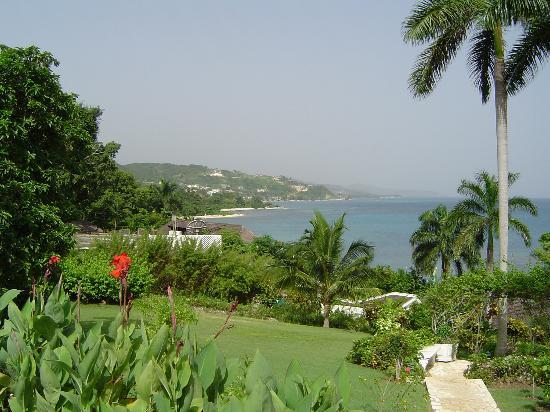 Hopewell, Jamaica: On the path to our cottage