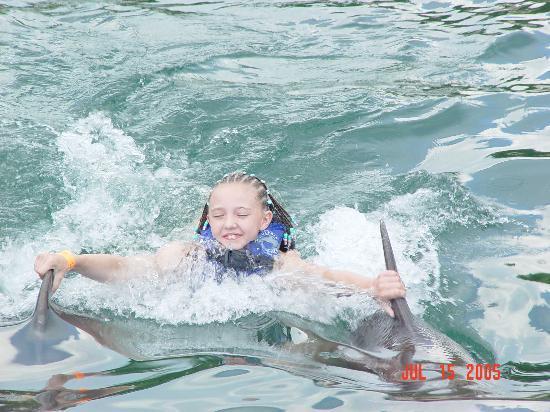 Puerto Aventuras, Mexico: Dolphin pull