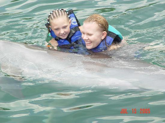 Puerto Aventuras, Meksiko: Playing with the dolphins