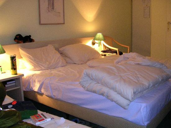 森格酒店照片