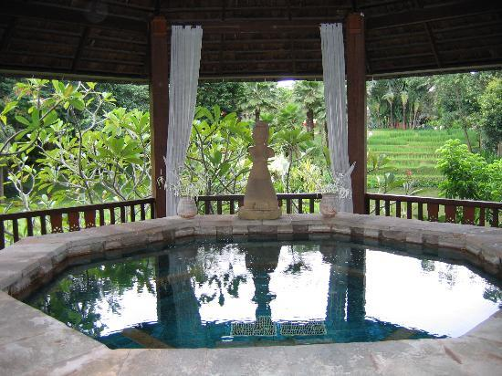 Four Seasons Resort Chiang Mai: jacuzzi