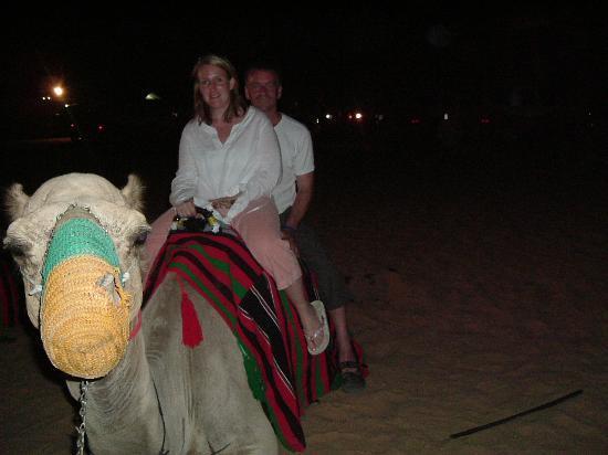 Le Meridien Al Aqah Beach Resort: Desert Safari