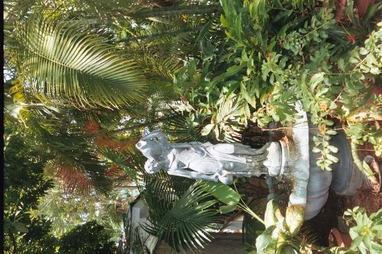 Key West Harbor Inn: Tropical Garden