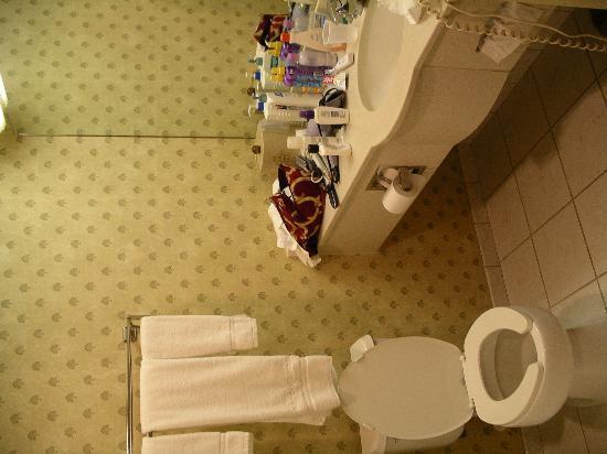 Holiday Inn Express Dover : bathroom