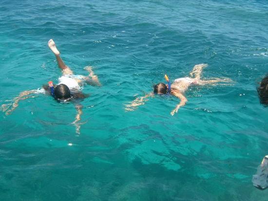 Sombrero Reef Photo