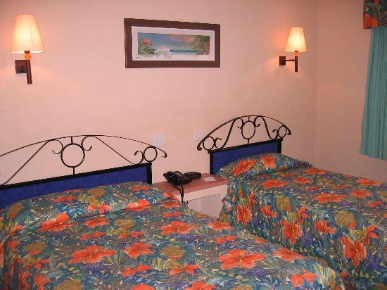 Comfort Inn Los Cabos: Hotel Room