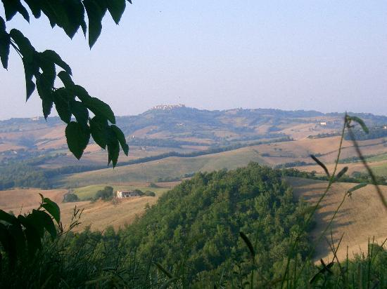 Agriturismo Erta: View of Casole d'Elsa from the pool