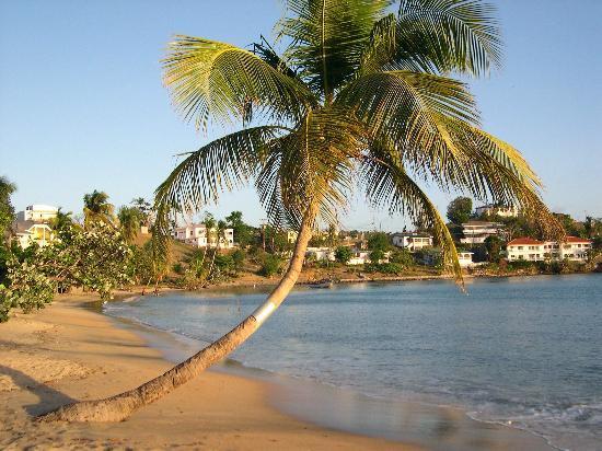 Lance Aux Epines Cottages: the beach