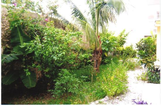 Posada Luna del Sur: Janet's oasis in Tulum
