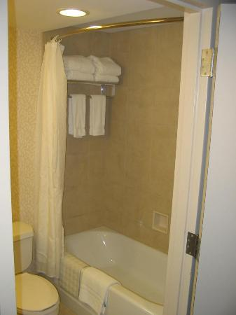 Hilton Garden Inn Virginia Beach Town Center: Bathroom tub