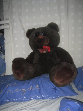 Nicky's Bed & Breakfast: The bear who very kindly guarded our room...