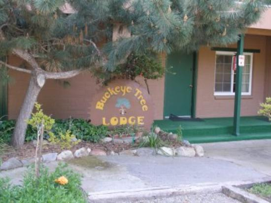 Buckeye Tree Lodge: The Hotel Sign out front
