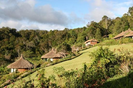 Tari, Papua Ny Guinea: ambua lodge