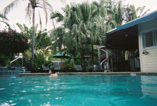 Travelers Palm Inn: In the pool