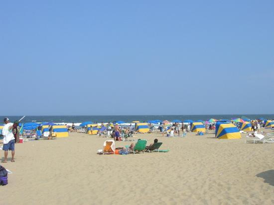 Virginia Beach Resmi