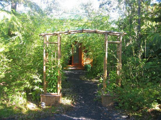 Entrance to Rainforest Retreat Bamboo Cottege