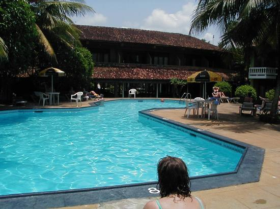 Hotel Hibiscus Beach: pool hibiscus beach hotel