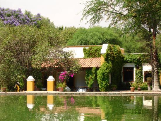 Hotel Villa Antigua : Thermal pond