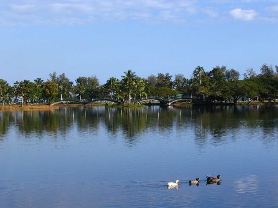 Waiakea Villas: Waiakea Pond