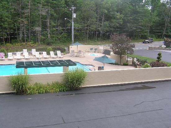 Tall Pines Motel: The Pool 1