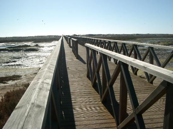 Almancil, Portugal: The wooden bridge to the beach over the nature reserve