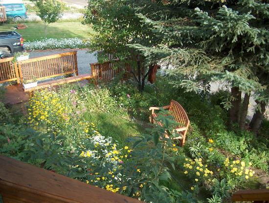 Beary Patch Bed and Breakfast: Garden area