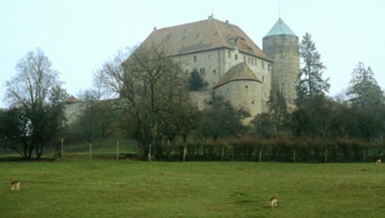 Hotel Burg Colmberg: Schloss Colmberg