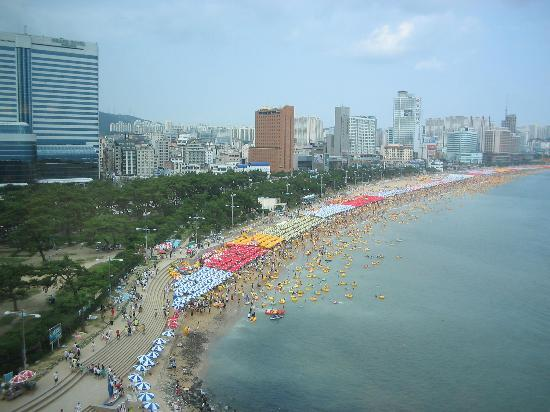 The Westin Chosun Busan: Busy Haeundae Beach!  (from 9th floor)
