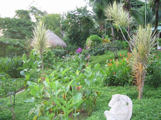 Costa Paraiso: Botanical Garden