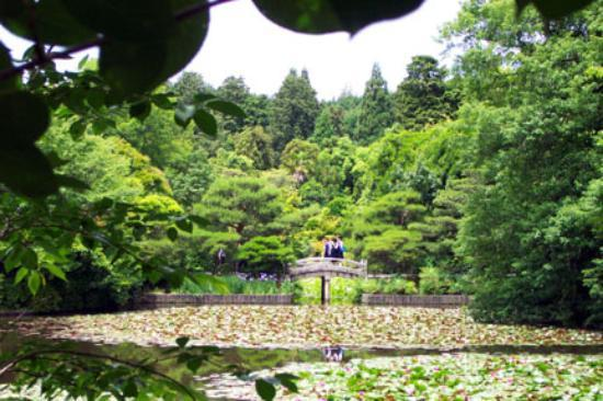 Ryogen-in Temple : The lovely grounds of Ryoan-ji