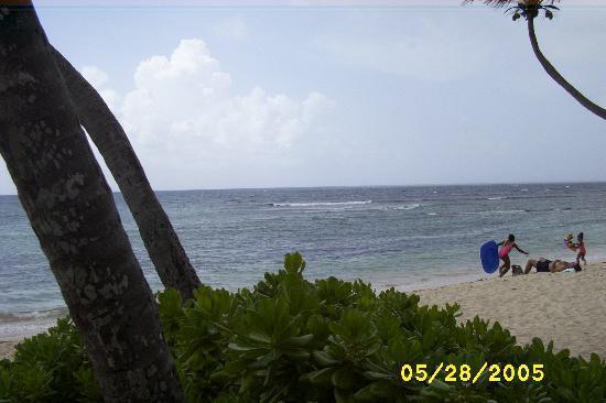 Pelican Cove Condos: View of Carribean Sea