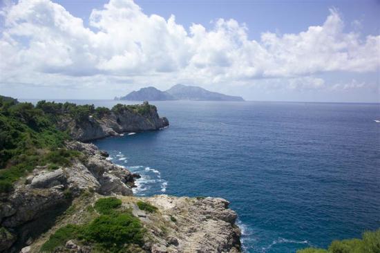 Hotel Delfino : View of Capri